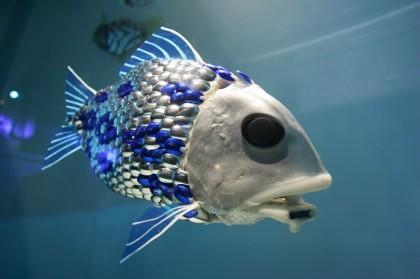 roboticfish